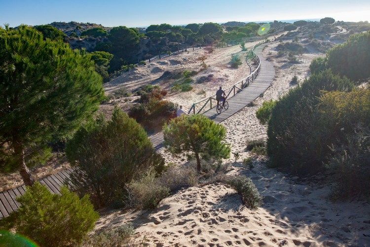 Top 5 TO-DO in Andalusië - Ga naar het Doñana National Park